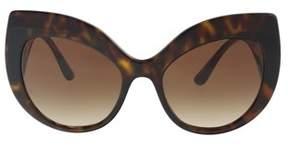 Dolce & Gabbana Dg4321 502/13 Havana Cat Eye Sunglasses.
