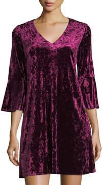 Eliza J Crushed Velvet V-Neck A-line Dress