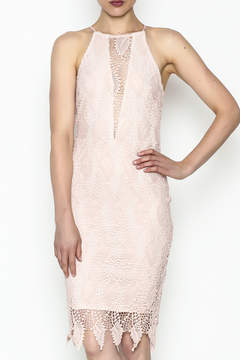 Ark & Co Lace Bodycon Dress