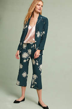 Capulet Chrysanthemum Pants