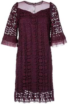 Aula lace detail ruffled sleeve dress