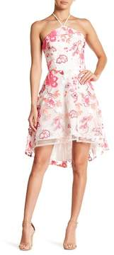 Alexia Admor Embrodiered Hi-Lo Dress