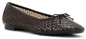 Louise et Cie Congo – Perforated Ballet Flat