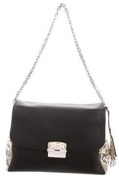 Christian Dior Python-Trimmed Diorling Bag