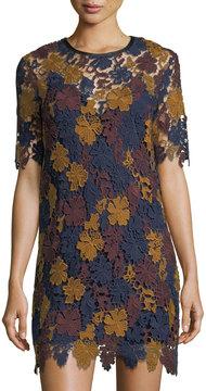 Astr Charlotte Lace Short-Sleeve Dress