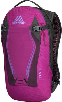 Gregory Amasa 6L Backpack
