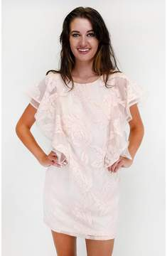Ark & Co In A Blush Lace Dress
