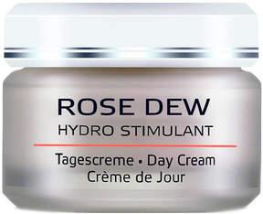 Rose Dew Day Cream by Annemarie Borlind (1.7oz Cream)