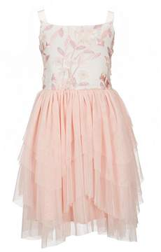 Us Angels Blush by Big Girls 7-16 Embroidered Tulle Dress
