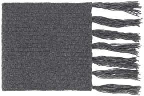 Golden Goose Deluxe Brand Stiner scarf