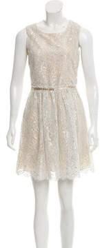 Erin Fetherston ERIN by Metallic Lace Dress