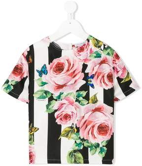 Dolce & Gabbana rose and striped print T_shirt