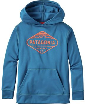 Patagonia Graphic PolyCycle Pullover Hoodie