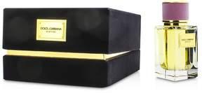 Dolce & Gabbana Velvet Love Eau De Parfum Spray