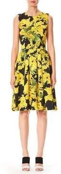 Carolina Herrera Sleeveless Floral-Print Fit-and-Flare Cotton-Blend Day Dress