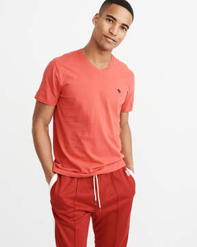 Abercrombie & Fitch Icon V-Neck Tee