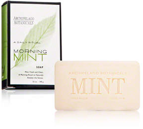 Archipelago Botanicals Morning Mint Soap
