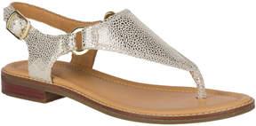 Sperry Abbey Sandal