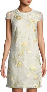 Donna Ricco Embroidered Cap-Sleeve Mini Dress