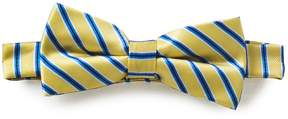 Class Club Narrow Stripe Bow Tie