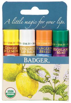 Badger Classic Lip Balm Sticks Ginger Lemon, Unscented, Tangerine, Mint