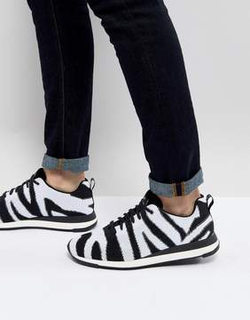 Paul Smith Rappid Knitted Zebra Sneaker In Black/White