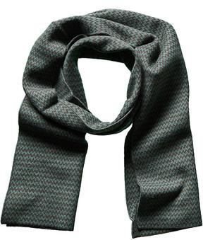 Portolano Men's Green Wool & Cashmere-Blend Scarf