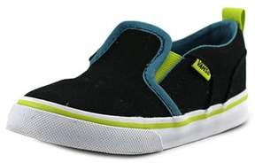 Vans Asher V Round Toe Canvas Skate Shoe.