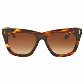 Tom Ford Celina Brown Gradient Sunglasses