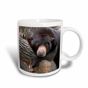 DAY Birger et Mikkelsen 3dRose Oh Man, What a Day, Black Bear, Ceramic Mug, 11-ounce
