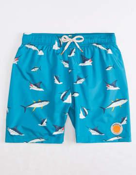 Trunks Ambsn Bight Boys Swim
