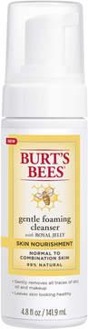Burt's Bees Skin Nourishment Gentle Foaming Cleanser