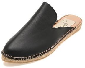 Gaimo Pointed Toe Mule Black