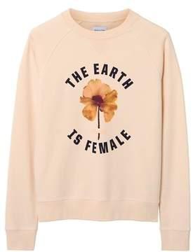 Gant Men's Pink Cotton Sweatshirt.