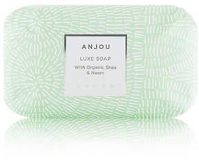 Zents Anjou Soap