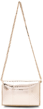 Givenchy Minaudiere Chain Ayers Pandora Box in Metallics,Animal Print.