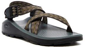 Chaco Z Cloud Saguaro Brindle Sandal