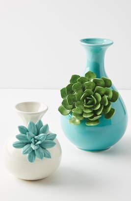 Anthropologie Succulent Vase