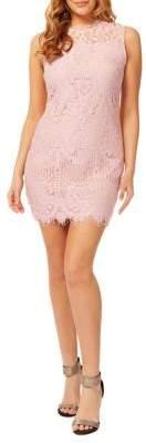 Dex Floral Lace Cotton Blend Sheath Dress