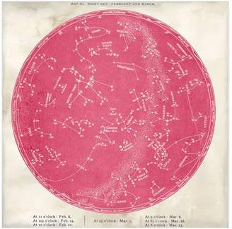 Pottery Barn Vintage Astronomical - Pink