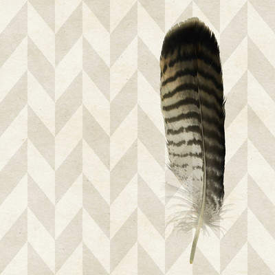 Wayfair 'Striped Feather' Painting Print on Wrapped Canvas