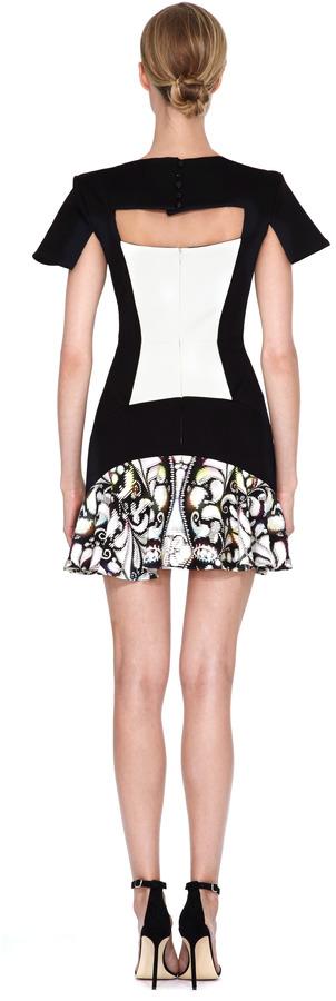 Peter Pilotto Jarr Printed Paneled Dress