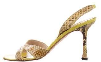 Manolo Blahnik Snakeskin Slingback Sandals