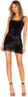 Parker Salem Dress