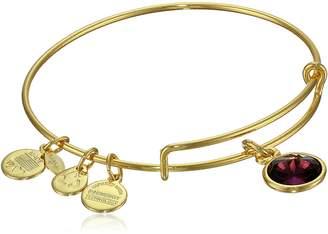 Alex and Ani Bangle Bar February Imitation Birthstone Gold-Tone Expandable Bracelet