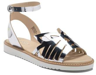 Seychelles Catnip Ankle Strap Leather Sandal