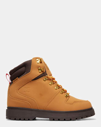DC Mens Peary Winter Boot