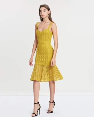 Cooper St Oasis Fitted Lace Dress
