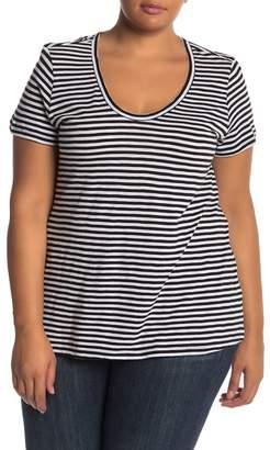 Susina Stripe Scoop Neck Slub T-Shirt (Plus Size)