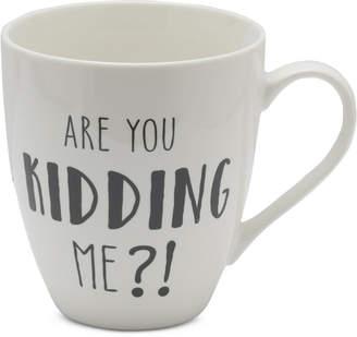 Pfaltzgraff Are You Kidding Me?! Mug